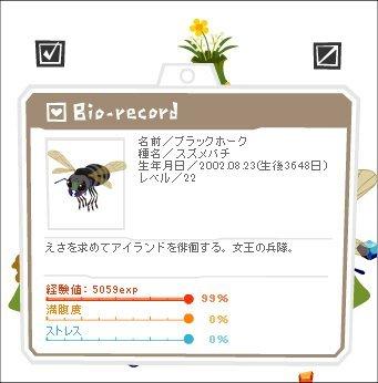 12081801ブラックホーク1-0-4-2.jpg