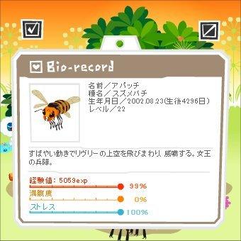 14052801アパッチ1-100-3-2.jpg
