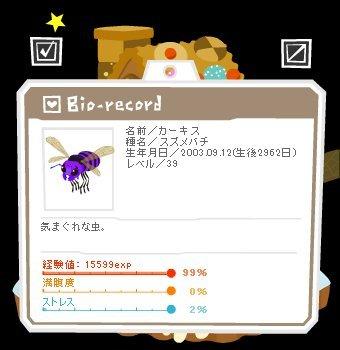 11102201カーキス1-0-3-3.jpg