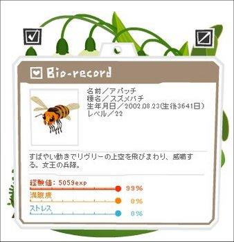 12081101アパッチ1-0-3-3.jpg