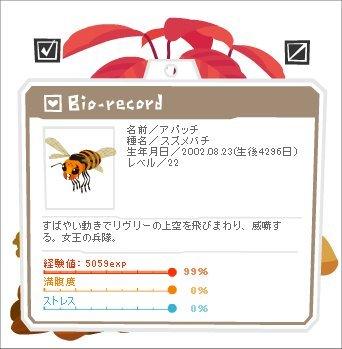 140528アパッチ2.jpg